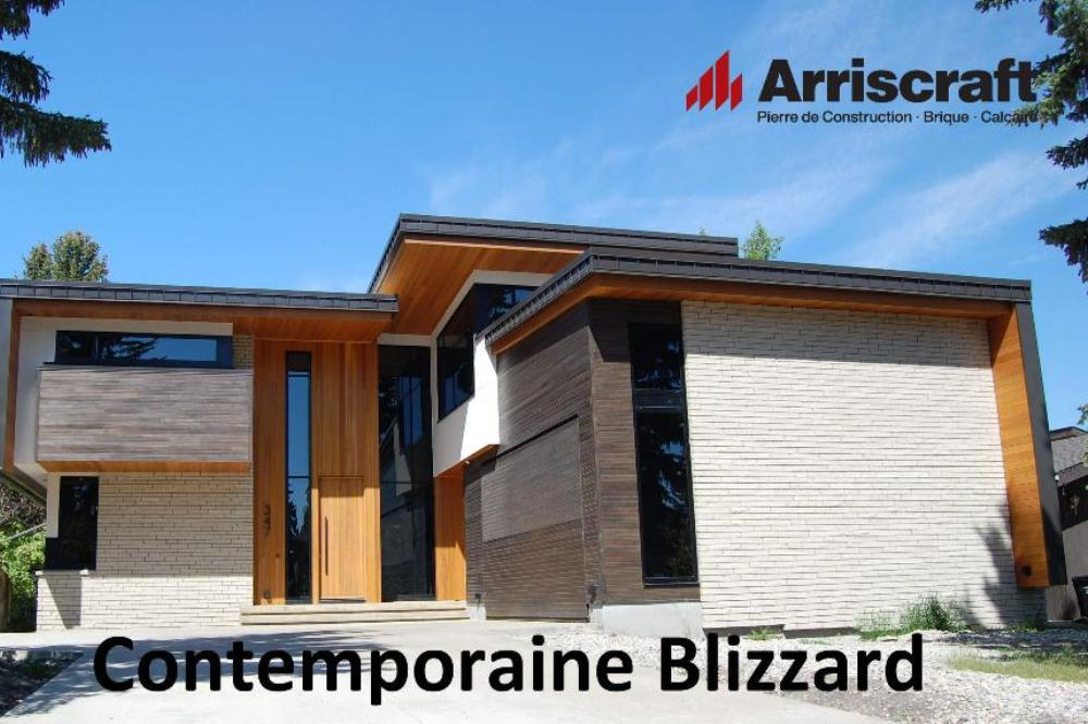 Contemporaine Blizzard
